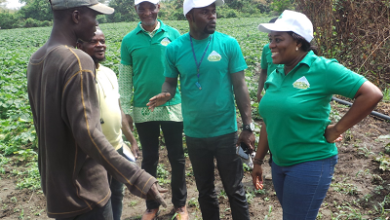 Photo of NaBCo beneficiaries tour farm in Tain District