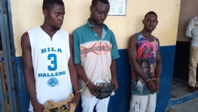 Photo of Suspects arrested for alleged robbery, possession of 'wee'