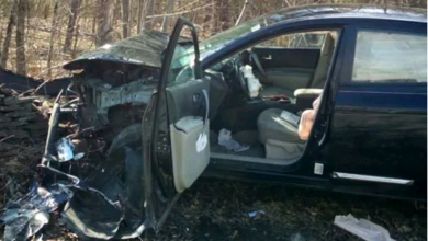 Photo of Woman crashes car after spotting spider