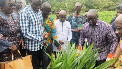 Photo of Lands Ministry to establish oil palm factory by 2023