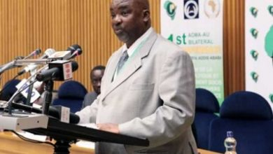 Photo of African countries urged to popularise ratification of free movement of persons pact
