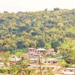 'Take drastic measures to save Kabakaba Forest Reserve'