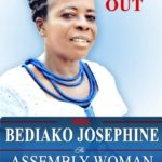 Intimidation of women contesting district level elections disincentive for participation in governance -Joseph Bediako