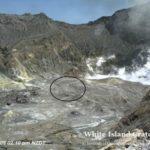 ?'No sign of life on New Zealand volcano island'