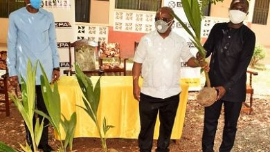 Photo of Coconut Revitalisation Programme launched in Volta Region