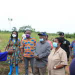 Mineral C'ssion to provide free fertiliser for farmers in oil palm plantation—S.K. Boafo