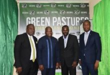 Photo of Green Pastures Counselling Consult Launched