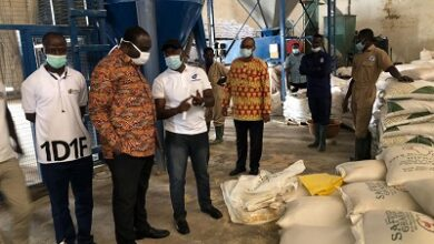 Photo of Govt supports Darko Farms with GH¢18m