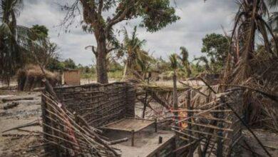 Photo of Mozambique denies mass beheading by jihadists